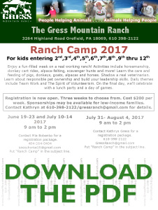Ranch Camp 2017
